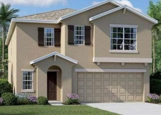 Pre Foreclosure in Wimauma 33598 WHITE MANGROVE DR - Property ID: 1593240507