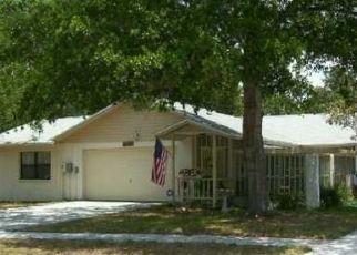 Pre Foreclosure in Tampa 33625 FULMAR DR - Property ID: 1594660865