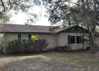 Pre Foreclosure in Fruitland Park 34731 PALM ST - Property ID: 1598539107