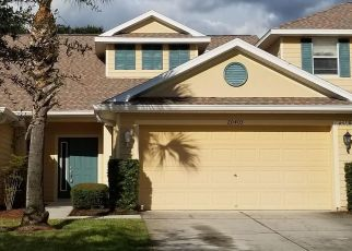 Pre Foreclosure in Tampa 33647 HARVEST OAK CT - Property ID: 1599333150