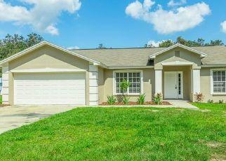 Pre Foreclosure in Lakeland 33809 BUCKHORN RUN - Property ID: 1601369298
