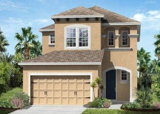 Pre Foreclosure in Apollo Beach 33572 LANTERN PARK AVE - Property ID: 1603789101
