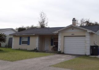 Pre Foreclosure in Seffner 33584 TRUMAN DR - Property ID: 1604824480