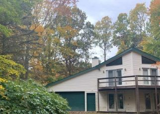 Pre Foreclosure in Kunkletown 18058 EL DO LAKE DR - Property ID: 1611909585