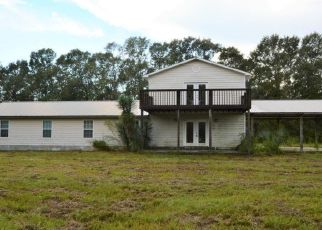 Pre Foreclosure in Chipley 32428 SNELL RD - Property ID: 1615421704
