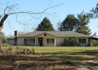 Pre Foreclosure in Westville 32464 STATE HIGHWAY 2 E - Property ID: 1621461806