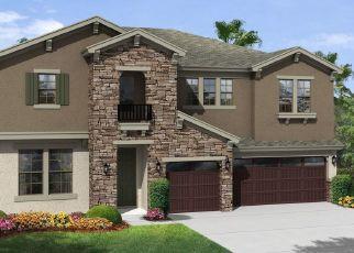 Pre Foreclosure in Wesley Chapel 33543 NATURAL BRIDGE RD - Property ID: 1626161697