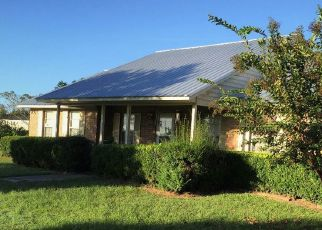 Pre Foreclosure in Lake Butler 32054 SW 128TH LN - Property ID: 1637678215