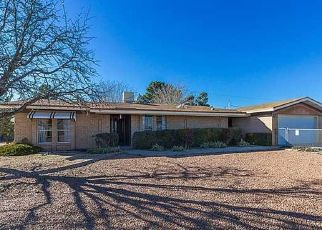 Pre Foreclosure in Chaparral 88081 STATE LINE DR - Property ID: 1643342540