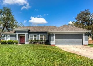 Pre Foreclosure in Ocoee 34761 SPARKLING WATER CIR - Property ID: 1644214999