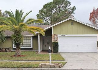 Pre Foreclosure in Tampa 33624 NATUREWALK DR - Property ID: 1644297320