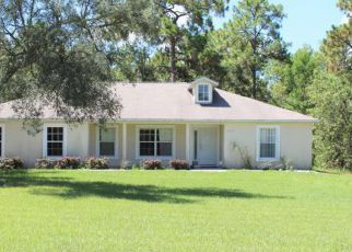 Pre Foreclosure in Brooksville 34613 MAYBIRD AVE - Property ID: 1657627499