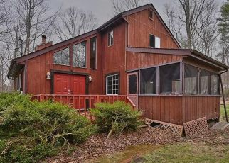 Pre Foreclosure in East Stroudsburg 18302 GEORGANNA DR - Property ID: 1661142238