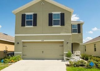 Pre Foreclosure in Sun City Center 33573 GEESE TRAIL CIR - Property ID: 1661833364
