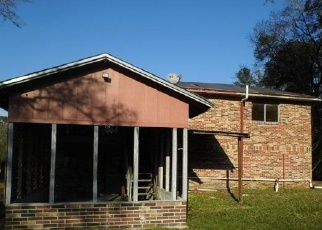 Pre Foreclosure in Middleburg 32068 SAUNDERS DR - Property ID: 1664038118