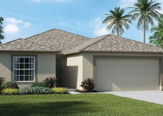 Pre Foreclosure in Sun City Center 33573 FEATHER STAR PL - Property ID: 1664768673