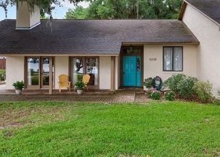 Pre Foreclosure in Clermont 34715 LAKESHORE DR - Property ID: 1667013279