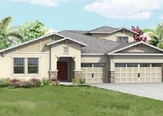 Pre Foreclosure in Mount Dora 32757 HACKNEY LOOP - Property ID: 1667019415