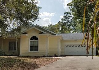 Pre Foreclosure in Floral City 34436 S FERN PT - Property ID: 1667131538