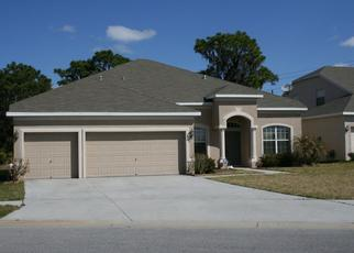 Pre Foreclosure in Riverview 33579 CATTAIL SHORE LN - Property ID: 1670575323