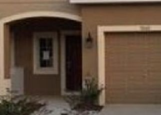 Pre Foreclosure in Riverview 33578 TOWNE LAKE RD - Property ID: 1671045716