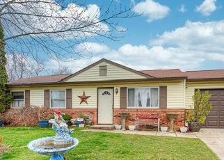 Pre Foreclosure in Indianapolis 46237 LA FLEUR CT - Property ID: 1671432890
