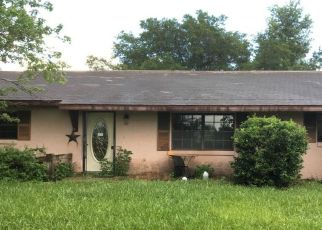 Pre Foreclosure in Floral City 34436 S QUARTERHORSE AVE - Property ID: 1675114937