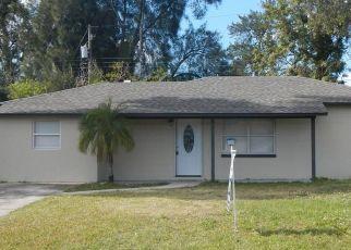 Pre Foreclosure in Apollo Beach 33572 FLORA TER - Property ID: 1685796678