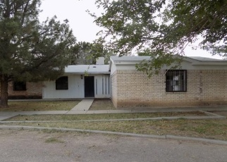 Pre Foreclosure in Las Cruces 88007 N VALLEY DR - Property ID: 1687229284