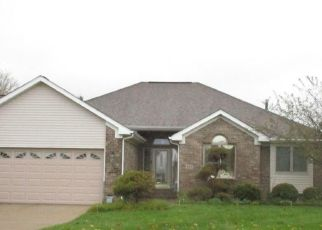 Pre Foreclosure in Charlotte 48813 CHADS WAY - Property ID: 1693081495