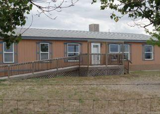 Pre Foreclosure in Winnemucca 89445 MILLIGAN LN - Property ID: 1694179947