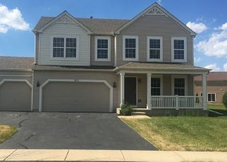 Pre Foreclosure in Minooka 60447 GOLDEN ROD DR - Property ID: 1696669829