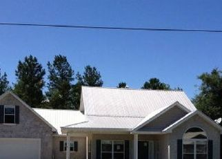 Pre Foreclosure in Townsend 31331 PELICAN LN SE - Property ID: 1699553887