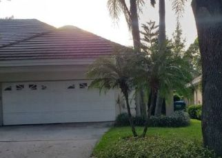 Pre Foreclosure in Palm Harbor 34684 PINNACLE CIR S - Property ID: 1705636455