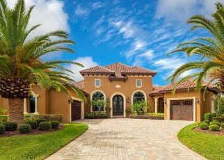 Pre Foreclosure in Sorrento 32776 GRANDVIEW POINTE - Property ID: 1707848217