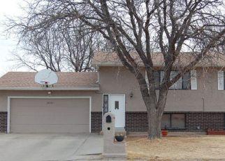 Pre Foreclosure in Pueblo 81006 CARMELA RD - Property ID: 1707912613