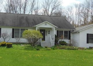 Pre Foreclosure in Manlius 13104 BLARNEY STONE WAY - Property ID: 1708299785