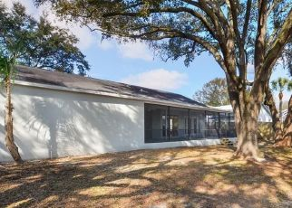 Pre Foreclosure in Riverview 33578 ERHARDT DR - Property ID: 1708452637