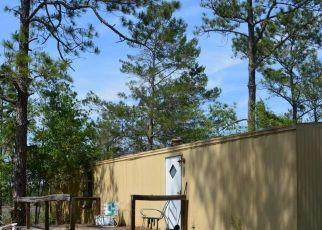 Pre Foreclosure in Keystone Heights 32656 M LAKE RD - Property ID: 1708834548