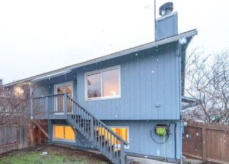Pre Foreclosure in Anchorage 99507 SNOW VIEW DR - Property ID: 1710824705