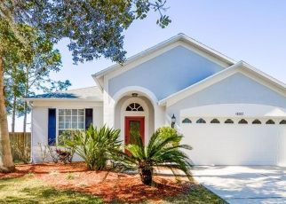 Pre Foreclosure in Tampa 33647 MISTY BLUE LN - Property ID: 1711148358