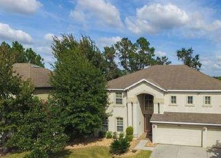 Pre Foreclosure in Land O Lakes 34637 NIGHT HERON DR - Property ID: 1716555143