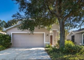 Pre Foreclosure in Land O Lakes 34637 MORNING MIST WAY - Property ID: 1716556913