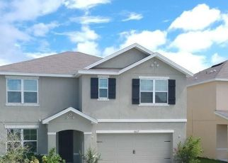 Pre Foreclosure in Riverview 33578 PARK MEADOWBROOKE DR - Property ID: 1716900714