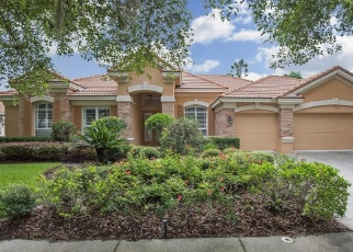 Pre Foreclosure in Tampa 33647 ARBOR GREENE DR - Property ID: 1717033861