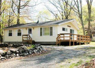 Pre Foreclosure in Bushkill 18324 GAP VIEW CIR - Property ID: 1719317907