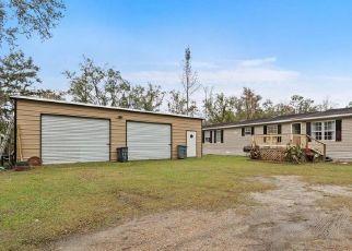 Pre Foreclosure in Palatka 32177 DAISY TRL - Property ID: 1720542464