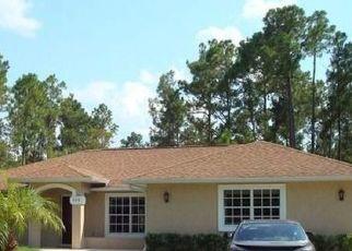 Pre Foreclosure in Naples 34120 12TH AVE NE - Property ID: 1722740211