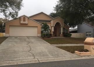 Pre Foreclosure in Valrico 33594 CITRUS ORCHARD WAY - Property ID: 1724905564