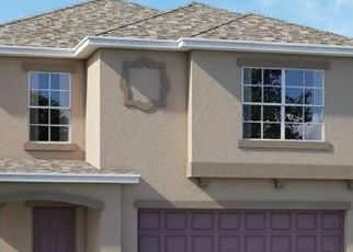 Pre Foreclosure in Wimauma 33598 SCENIC HILL WAY - Property ID: 1725935230
